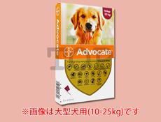 アドボケート大型犬