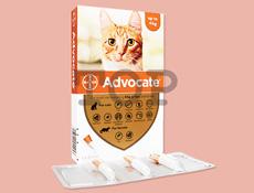 アドボケート猫用(4kg未満)