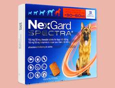 ネクスガードスペクトラ180(超大型犬 30~60kg)