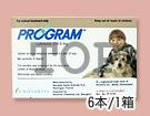 PROGRAM(プログラム錠L)
